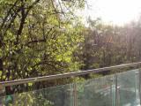 Сдам квартиру в ЖК Кристал парк проспект Победы 42 Crystal park